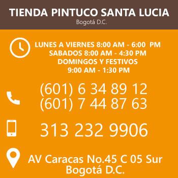 Tienda Pintuco Santa Lucia